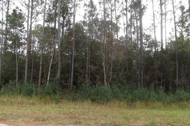 6647 Bluefish Road, Navarre, FL 32566 (MLS #787372) :: Vacasa Real Estate