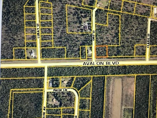 0000 Avalon Blvd, Milton, FL 32583 (MLS #809388) :: ResortQuest Real Estate