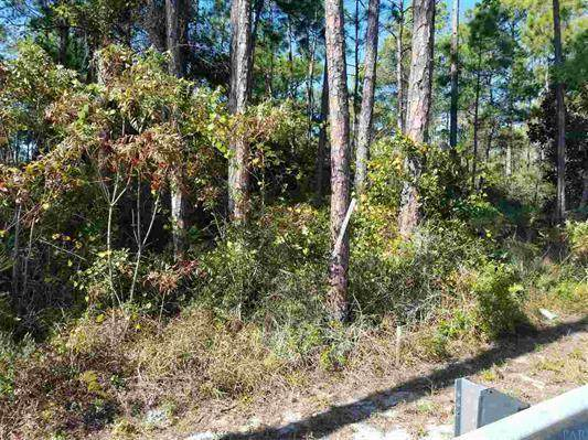 Lot 22 Tiburon Circle, Santa Rosa Beach, FL 32459 (MLS #855023) :: Vacasa Real Estate
