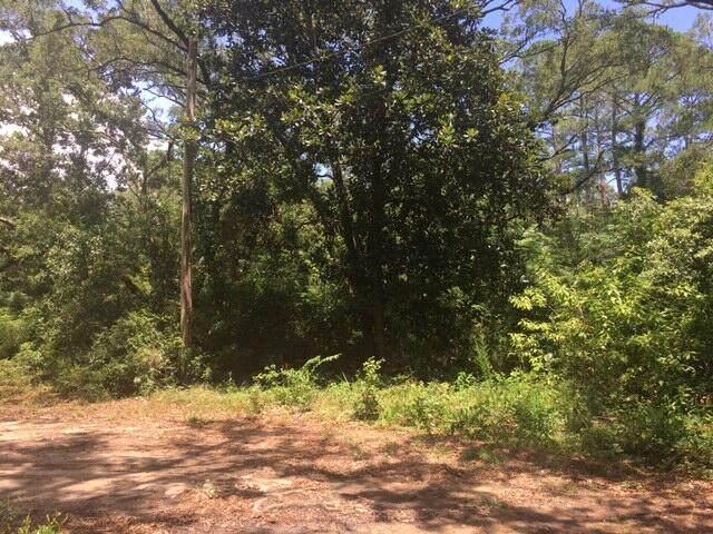 001 Big Oak Loop, Navarre, FL 32566 (MLS #875380) :: Levin Rinke Realty