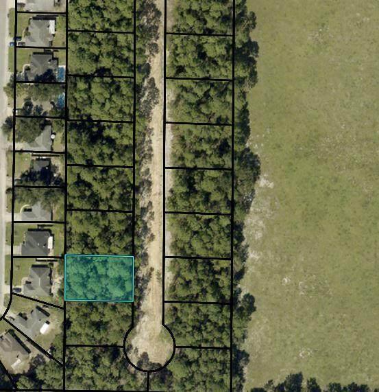 2555 Lovewood Drive, Navarre, FL 32566 (MLS #882984) :: Levin Rinke Realty