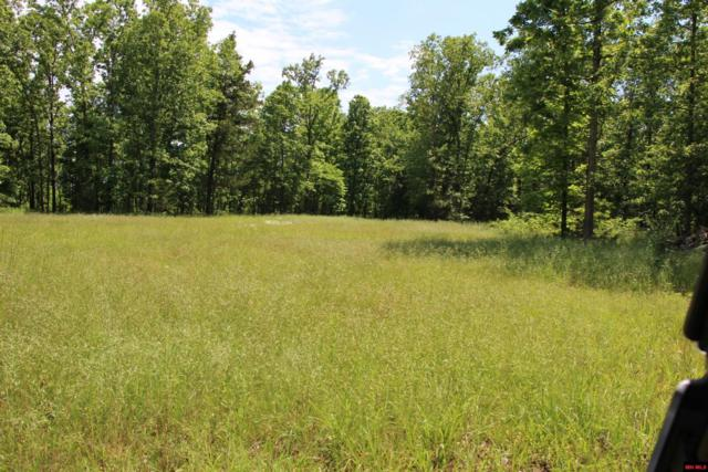 00 Hwy 125 North, Yellville, AR 72687 (MLS #122649) :: United Country Real Estate