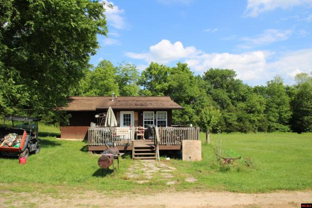 544 Cochran Lane, Yellville, AR 72687 (MLS #122650) :: United Country Real Estate