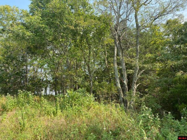 Land on S Hwy 235, Bruno, AR 72682 (MLS #122665) :: United Country Real Estate