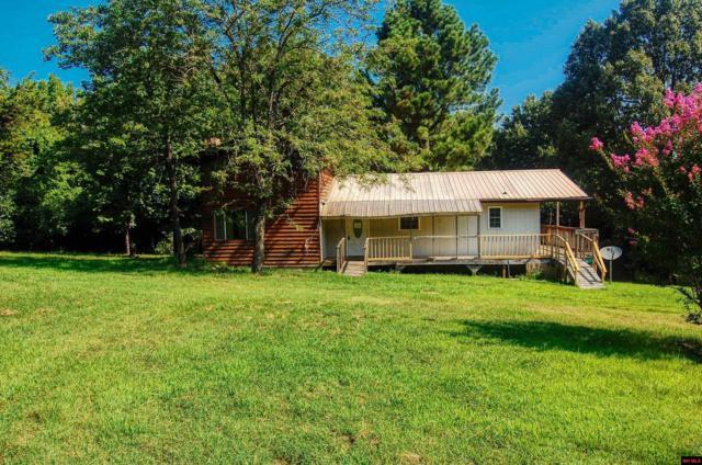 35 Floyd Lane, Peel, AR 72668 (MLS #122889) :: United Country Real Estate