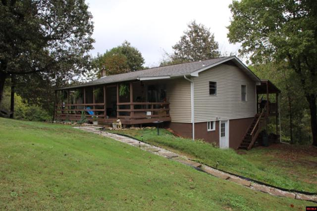 129 Haven Hill Lane, Yellville, AR 72687 (MLS #122891) :: United Country Real Estate