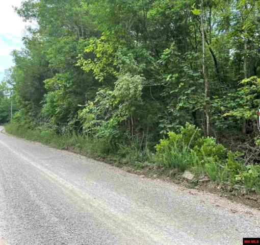 220 Mc 8125, Flippin, AR 72634 (MLS #122241) :: United Country Real Estate
