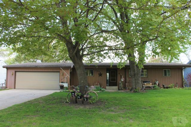 745 S Central Street, Forest City, IA 50436 (MLS #62019657) :: Jane Fischer & Associates