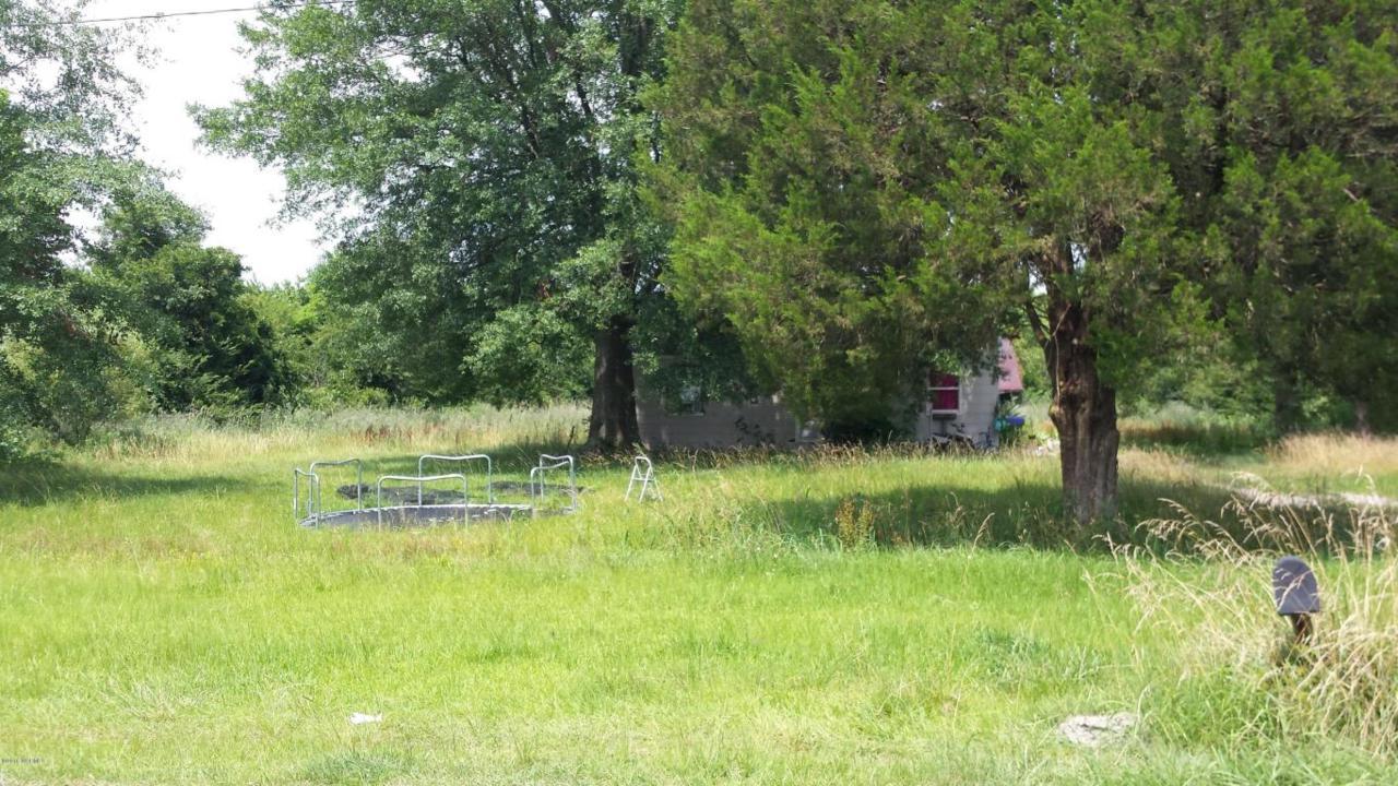 320 Giddeons Pond Road, Willard, NC 28478 (MLS #100018515) :: Century 21 Sweyer & Associates