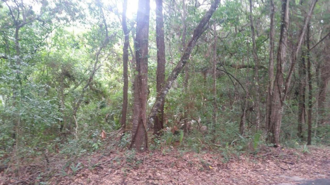 12 Bay Tree Trail - Photo 1