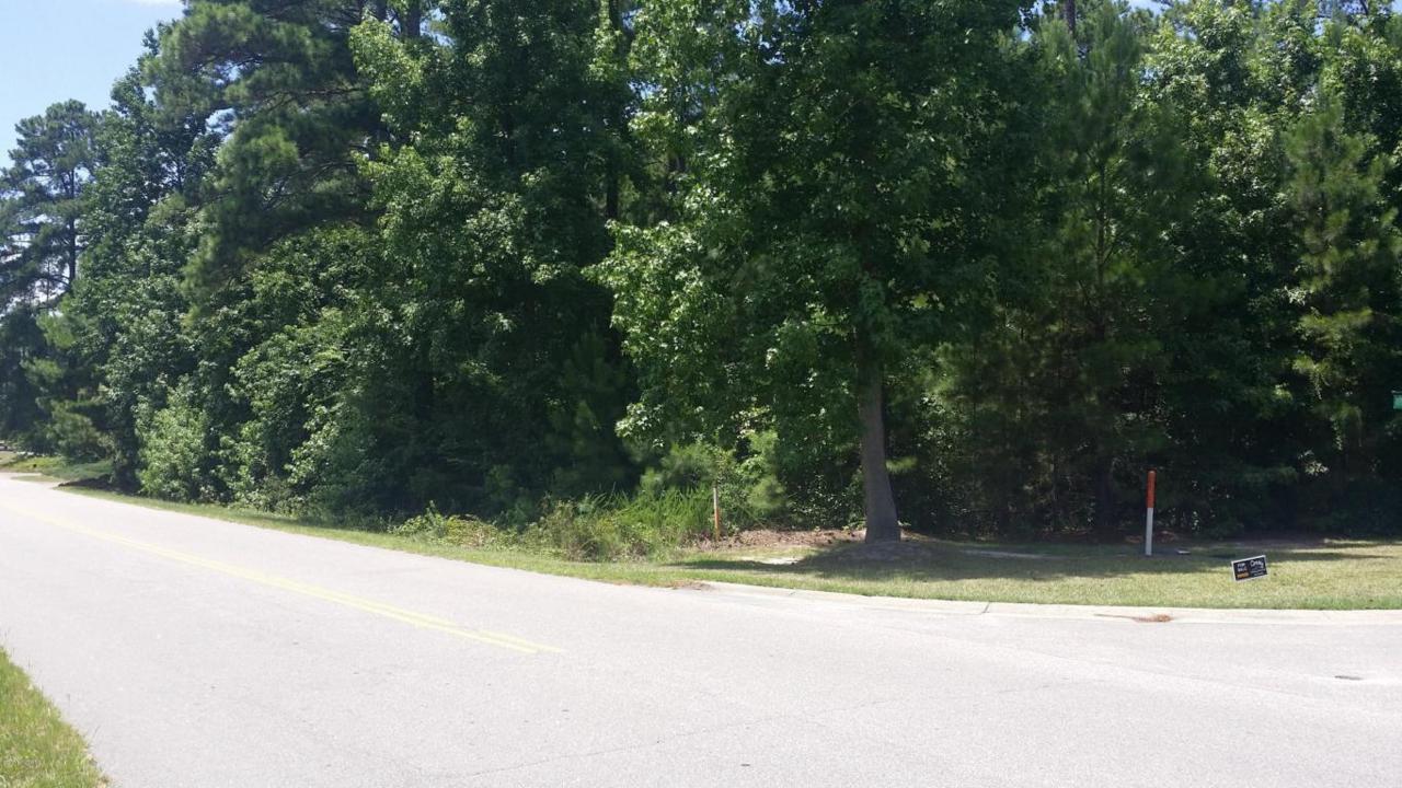 25 Wesley Pines Road - Photo 1