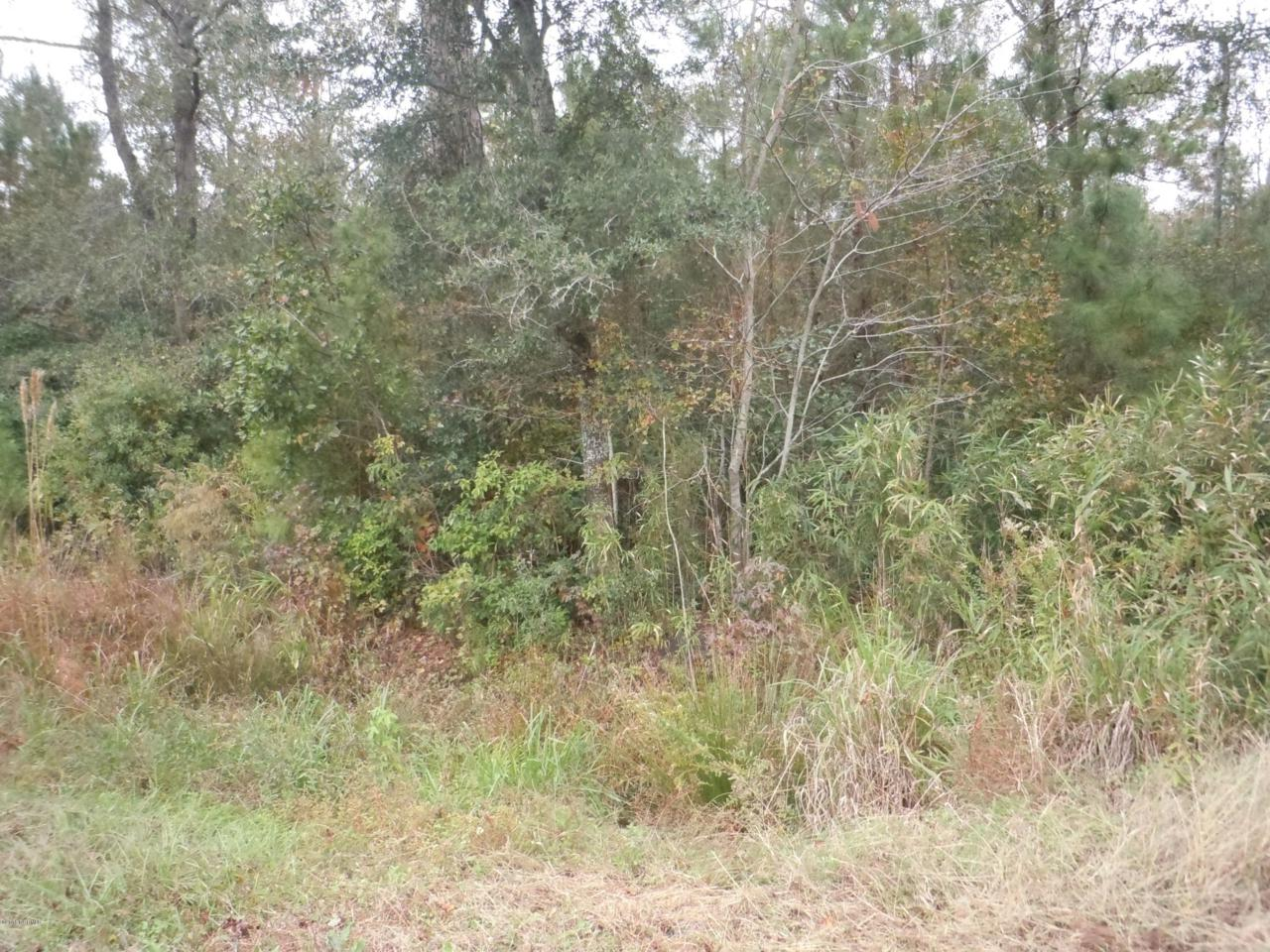 4193 Swamp Fox Highway - Photo 1