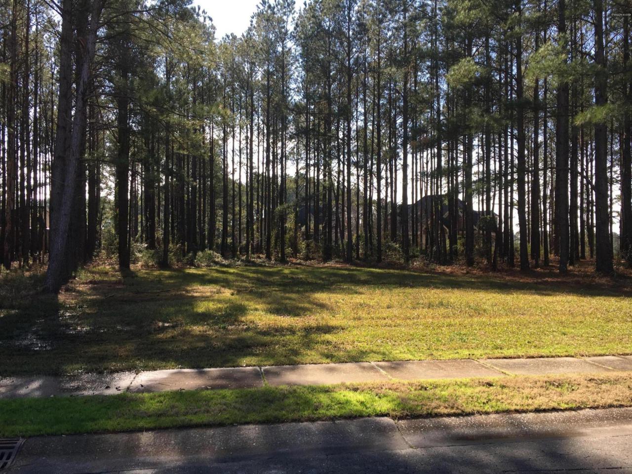 393 Crow Creek Drive - Photo 1