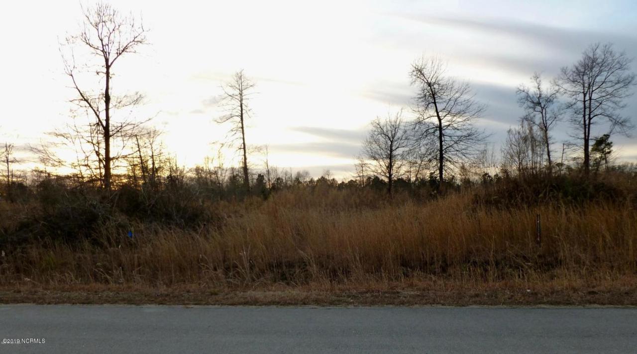 230 Mewborn Drive - Photo 1