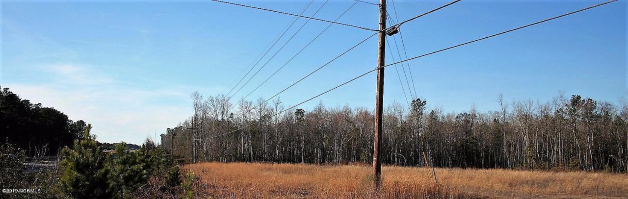 114 Andrew Jackson Highway - Photo 1