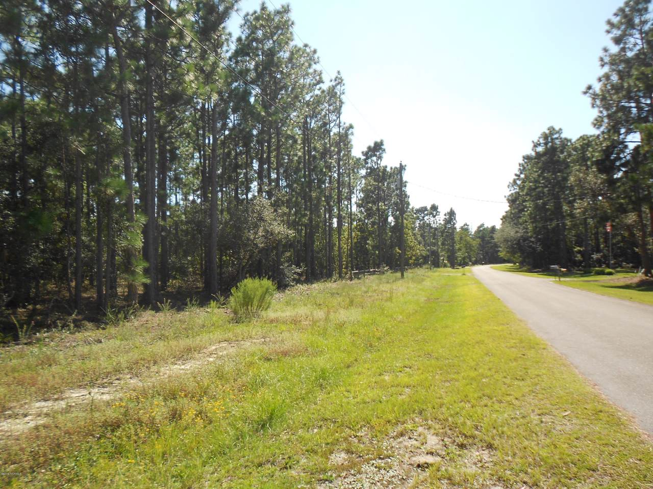 Lot 22-23 Morehead Road - Photo 1