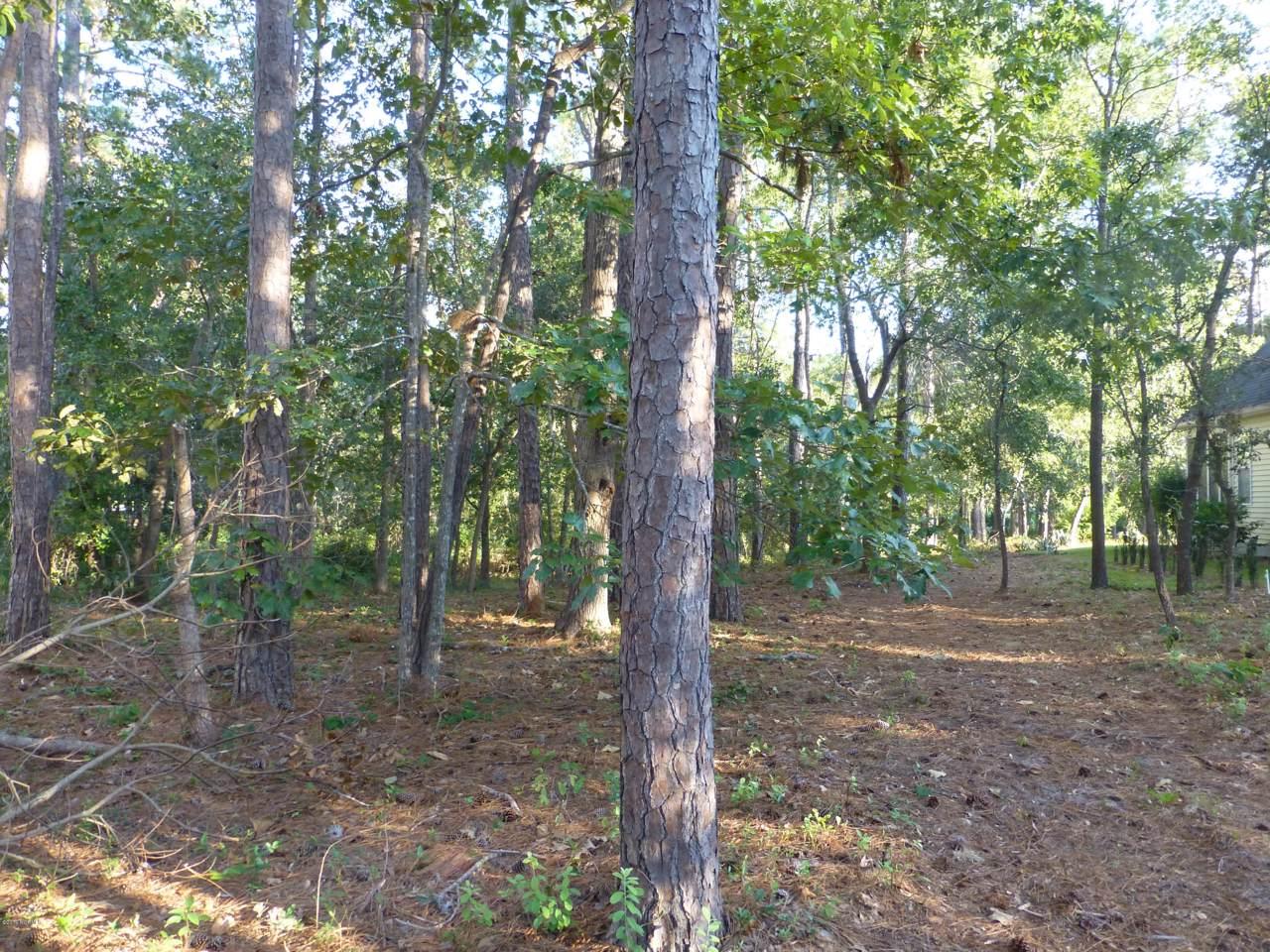 3849 Timber Stream Drive - Photo 1