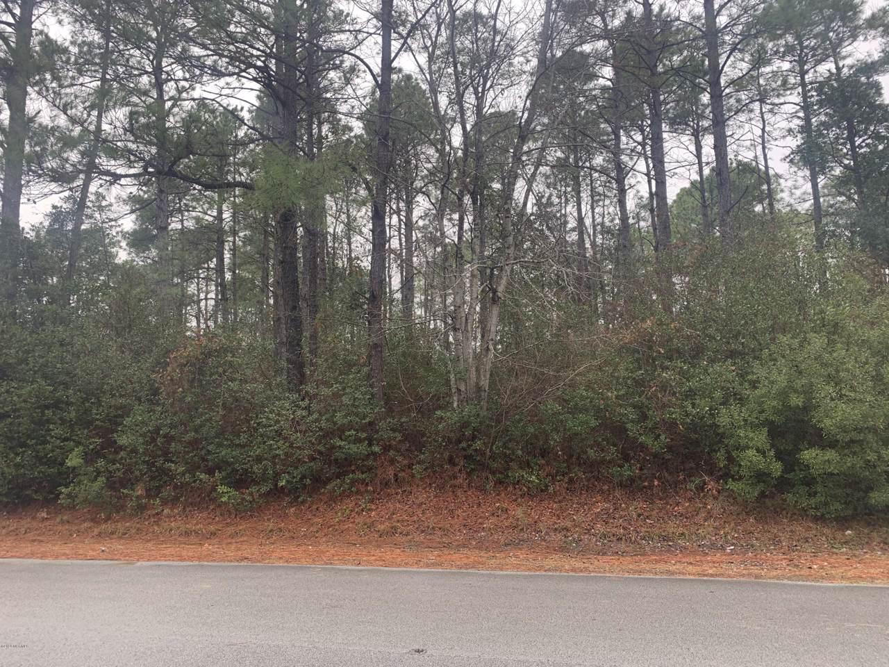 2055 Royal Pines Drive - Photo 1