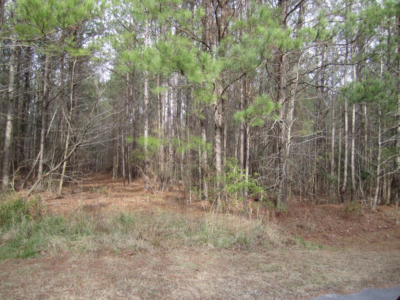 Lot 88 State Rd 1115 Off - Photo 1