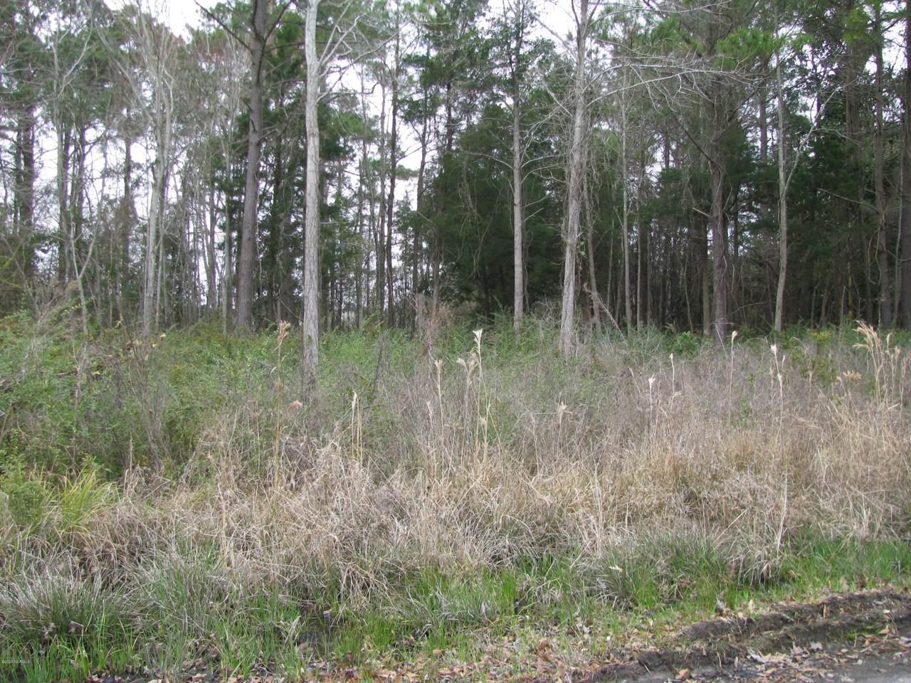 108 Pine Bluff Drive - Photo 1