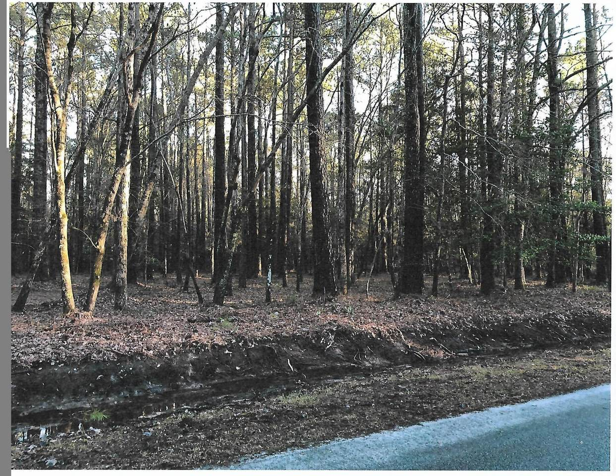Lot 123 Pamlico River Drive - Photo 1