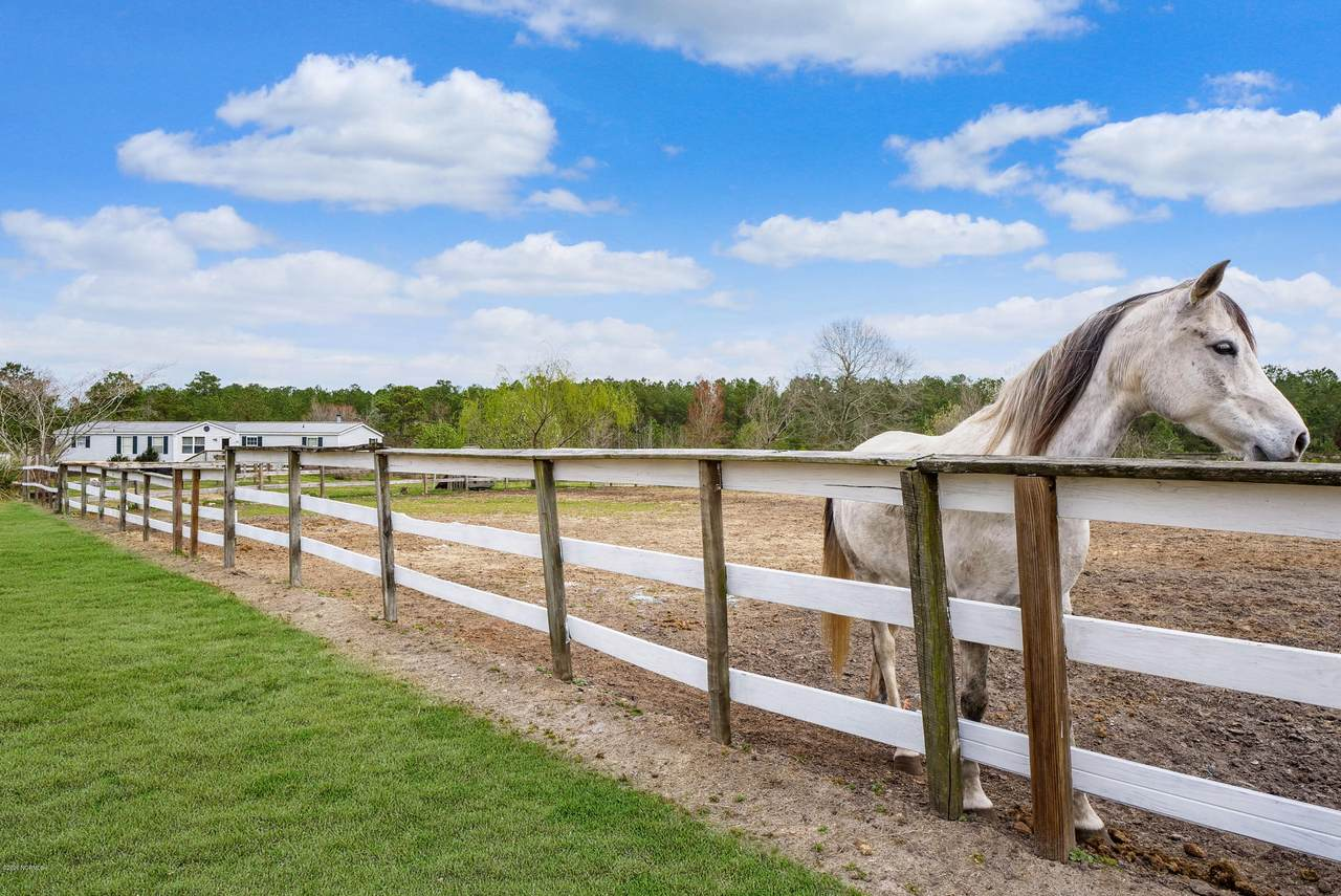 194 Arabian Lane - Photo 1