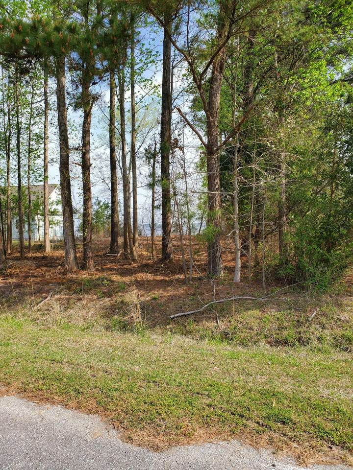 Lot 4 State Rd 1122 Road - Photo 1