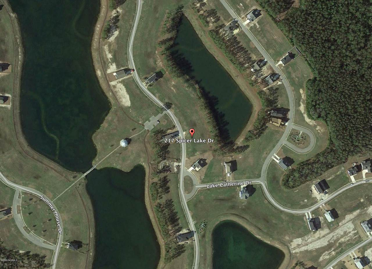 207 Spicer Lake Drive - Photo 1