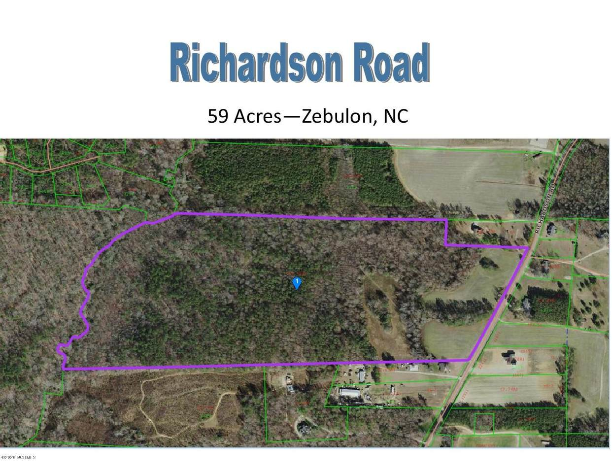 59 Acres Richardson Road - Photo 1