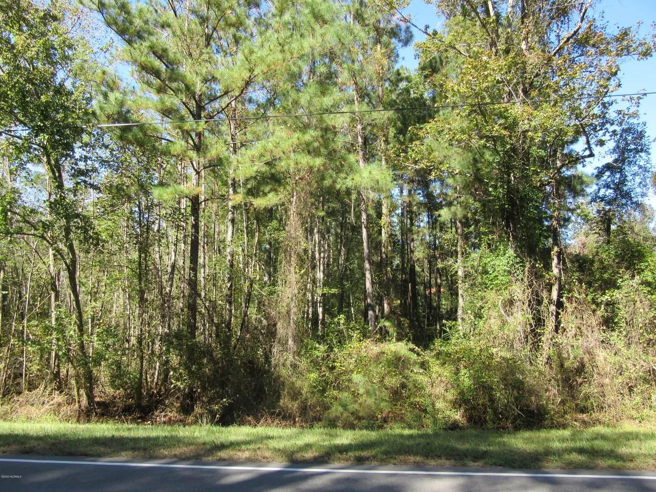 Near 4089 Sam Potts Highway - Photo 1