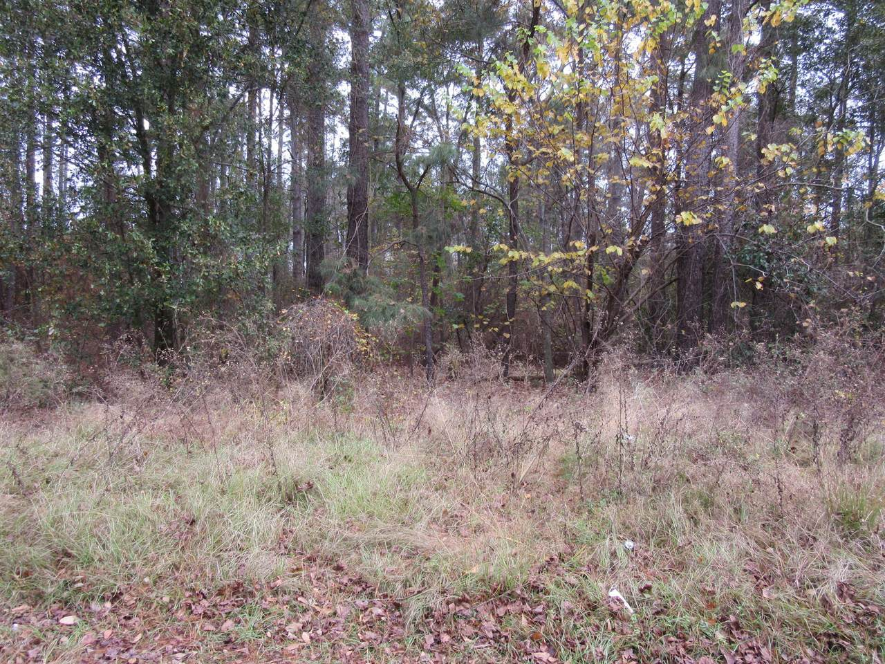 Lot 019 Butterfly Lane - Photo 1