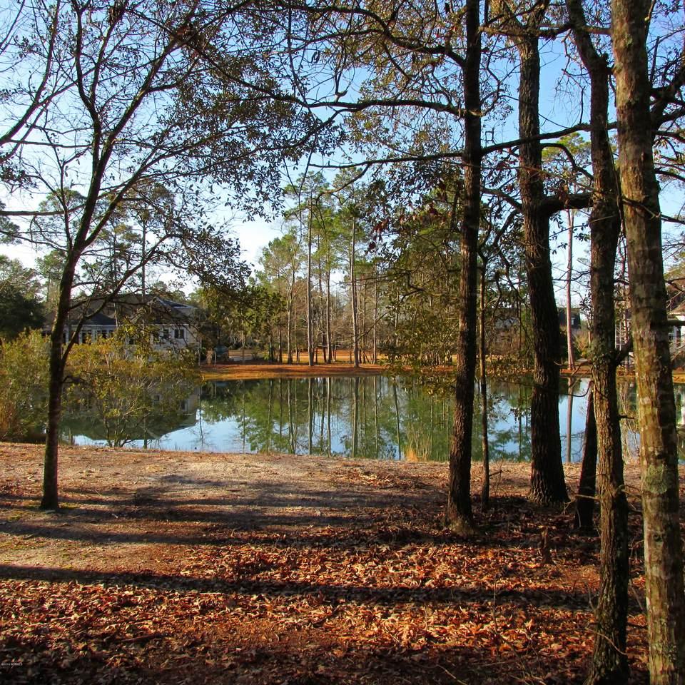 79 Plantation Passage Drive - Photo 1