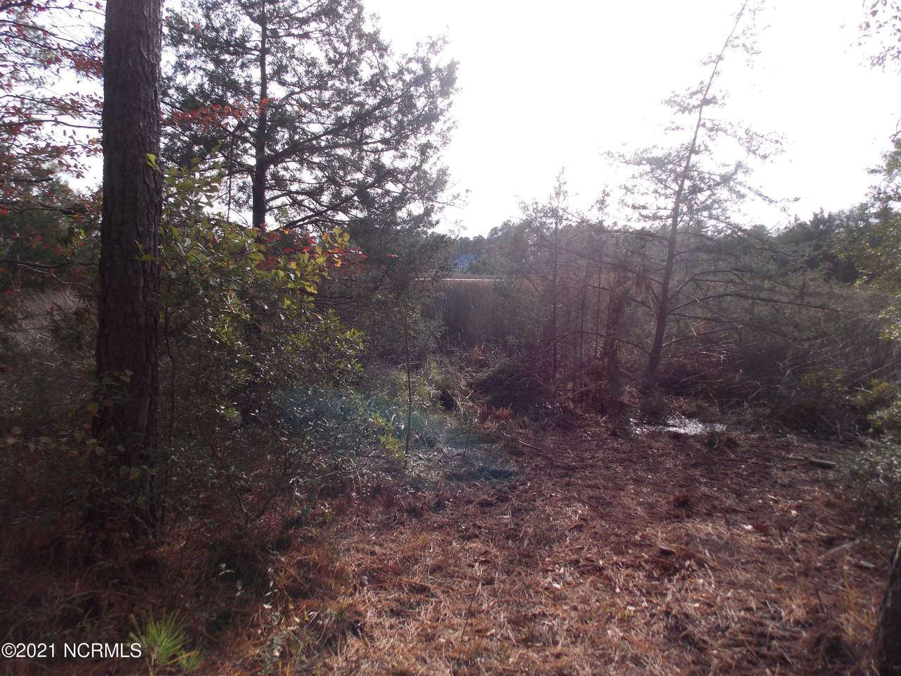 861 Old Mill Road - Photo 1