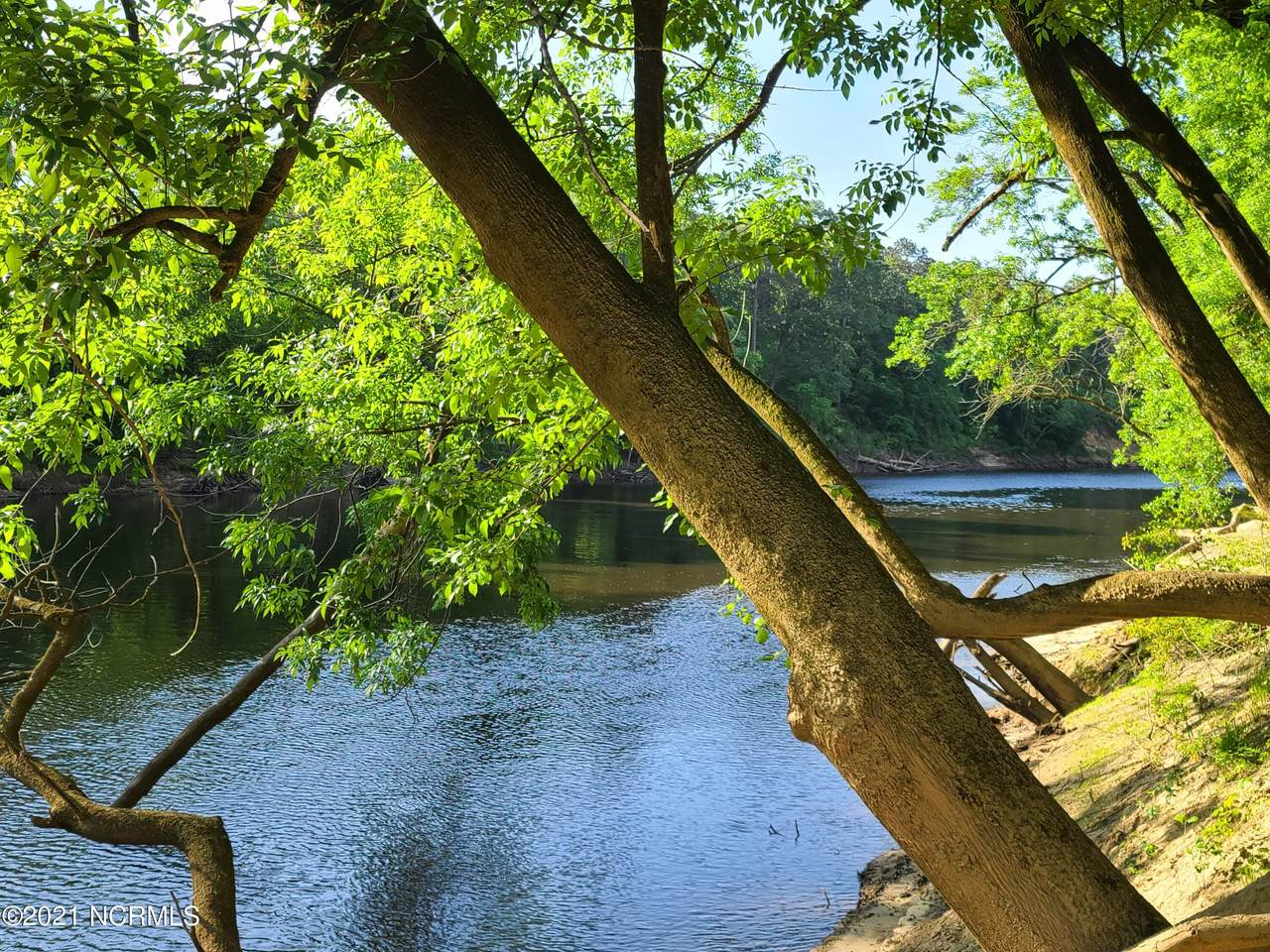 359 Riverview Drive - Photo 1