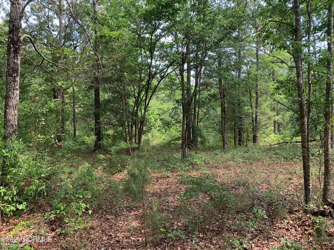 1061 Deer Pant Trail - Photo 1