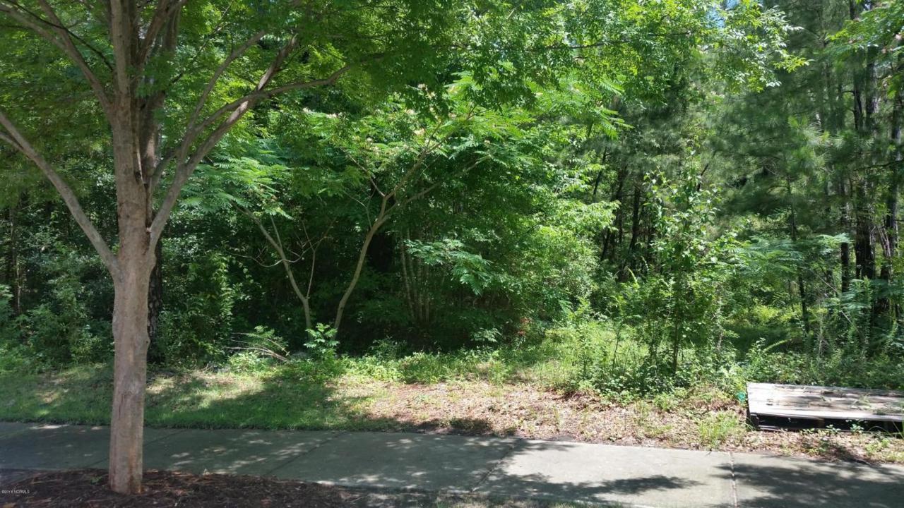 5327 Old Garden Road, Wilmington, NC 28403 (MLS #100015603) :: Century 21 Sweyer & Associates