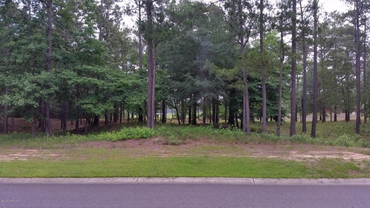 584 Hearthside Drive SE, Bolivia, NC 28422 (MLS #100016140) :: Century 21 Sweyer & Associates