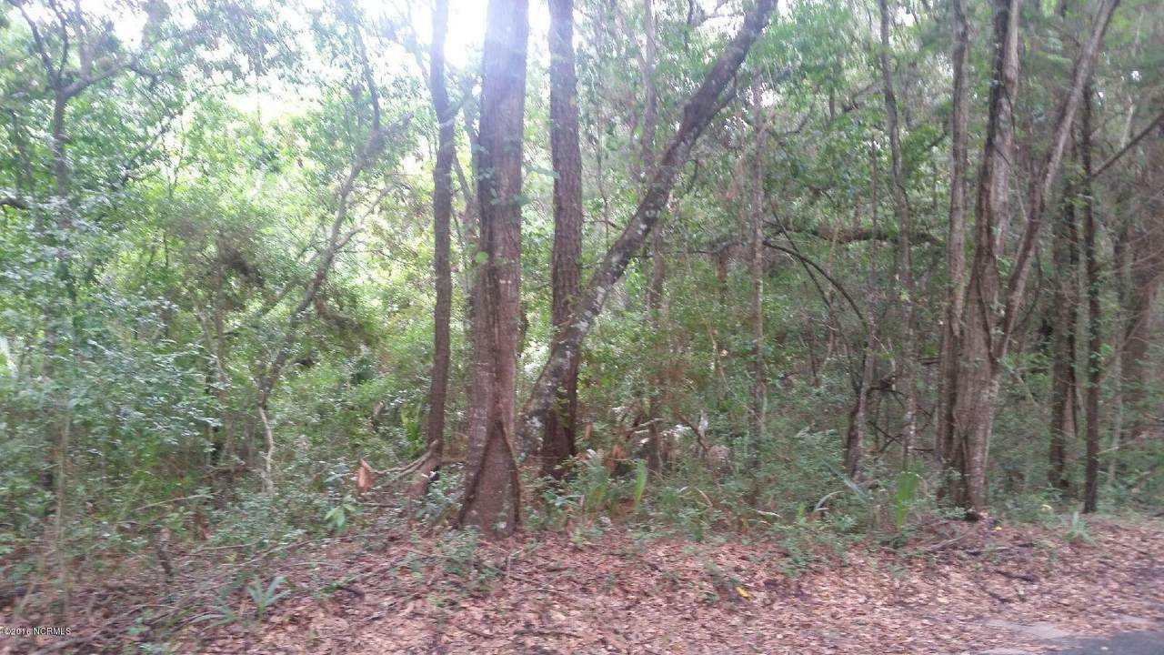 12 Bay Tree Trail - Photo 1