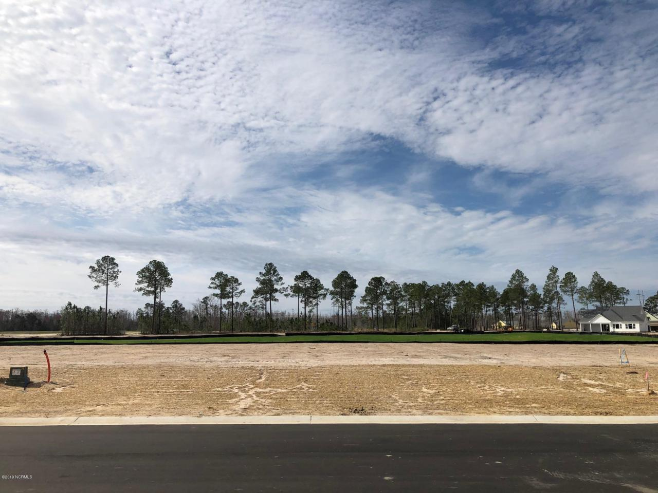 4329 Singletary Lake Drive - Photo 1
