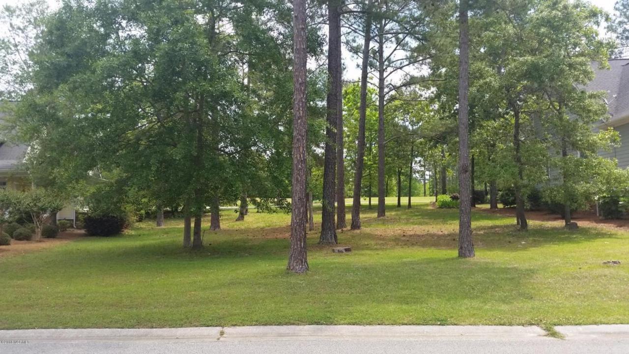 135 Plantation Passage Drive - Photo 1
