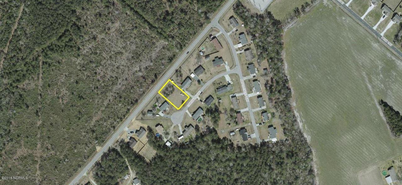 706 Oak Dale Lane, Sneads Ferry, NC 28460 (MLS #100025344) :: Century 21 Sweyer & Associates