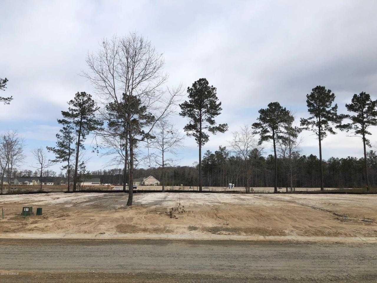 6440 Saxon Meadow Drive - Photo 1