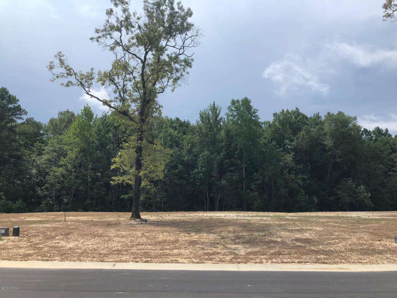 6409 Saxon Meadow Drive - Photo 1