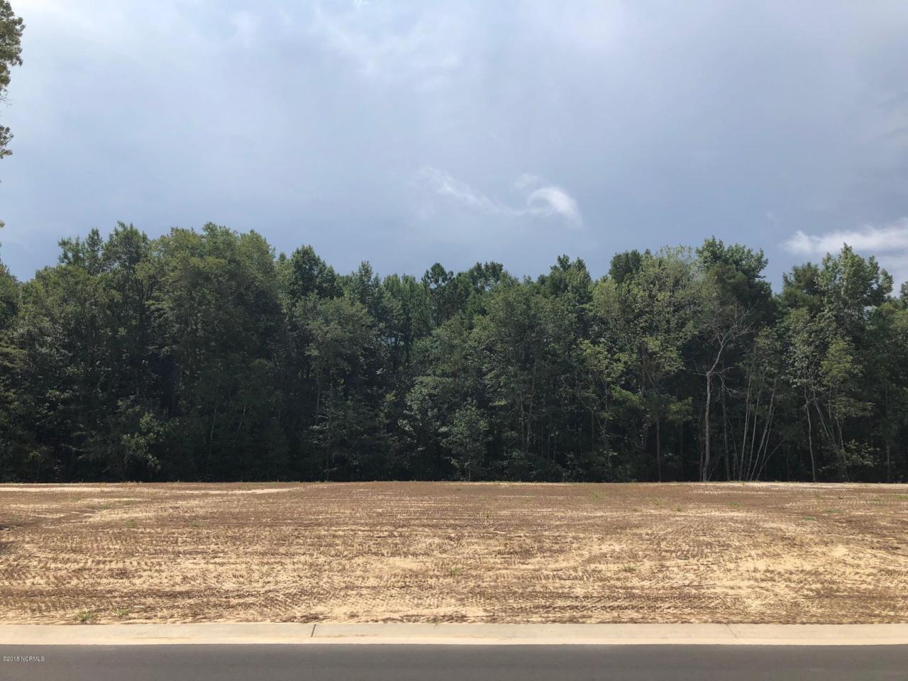 6421 Saxon Meadow Drive - Photo 1