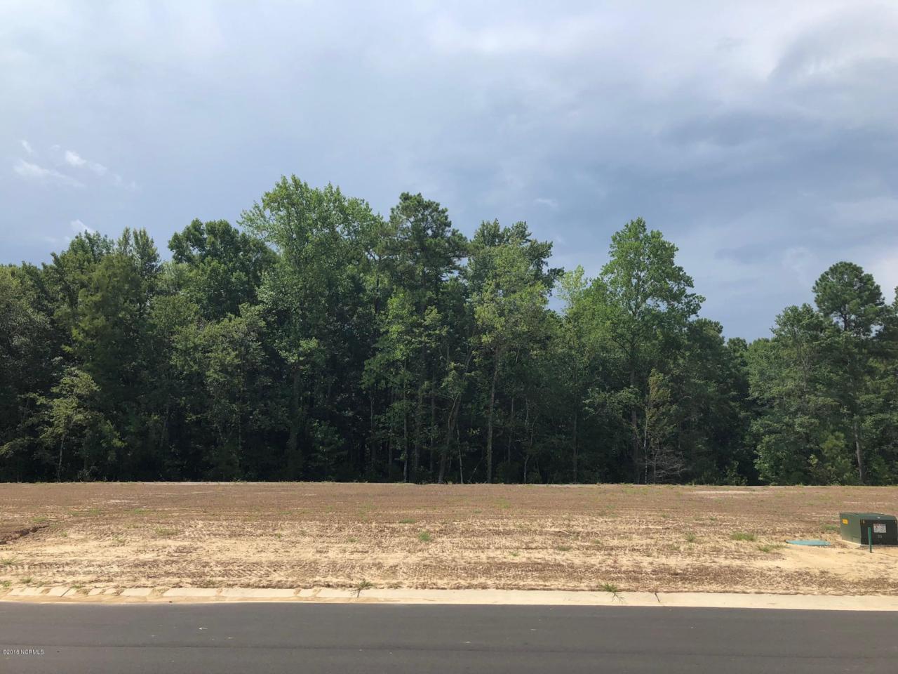 6445 Saxon Meadow Drive - Photo 1