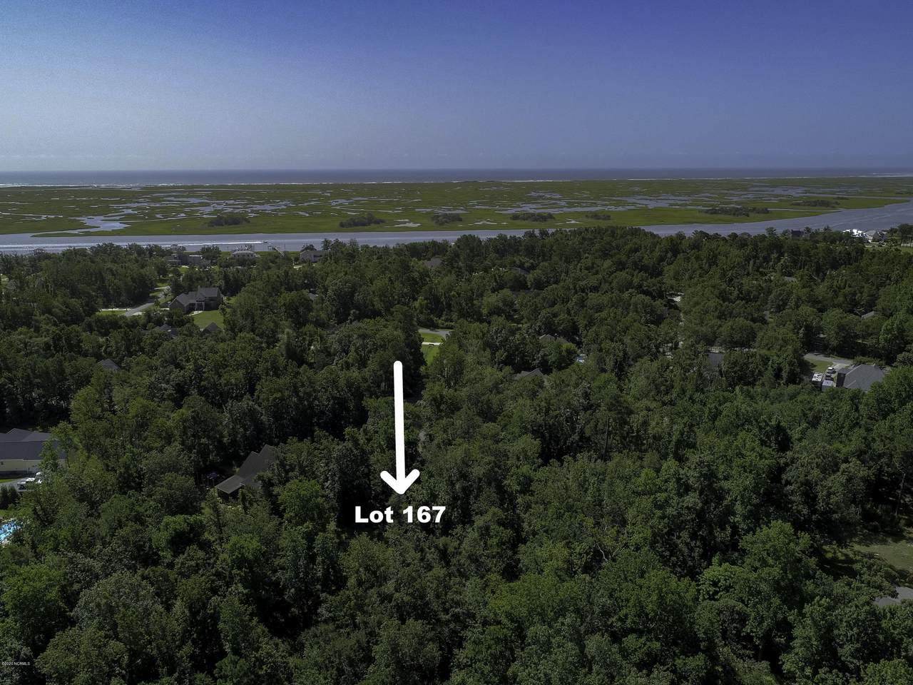 Lot 167 Baby Doe Circle - Photo 1