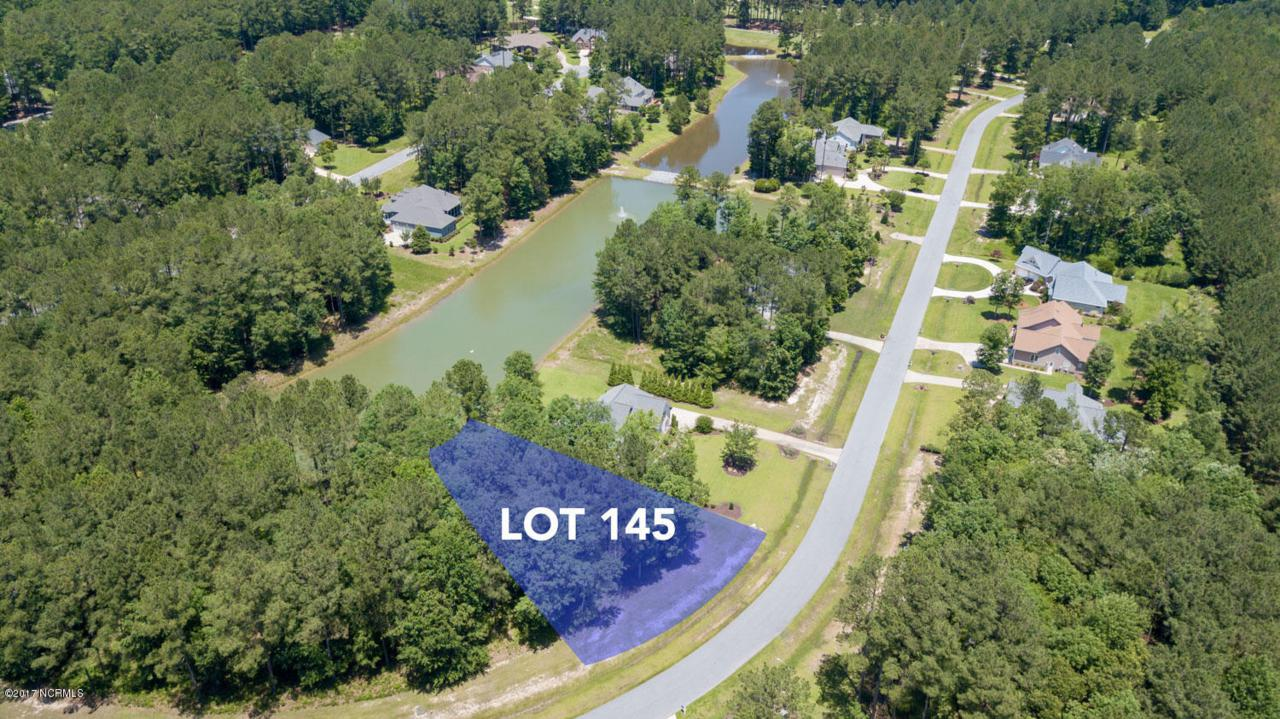 Lot 145 Cypress Landing Trail - Photo 1