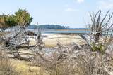 0 Bachelor Island - Photo 33