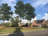 1209 Grandiflora Drive - Photo 1