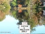 764 Lakeside Drive - Photo 11